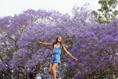 Girl and Jacaranda Tree Royalty Free Stock Images