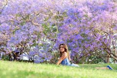 Girl and Jacaranda Tree Stock Images