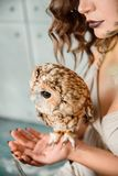 Portrait of beautiful young girl with owl. Professional makeup in a beautiful girl, a beautiful fluffy brown owl on the hand of a girl stock photos