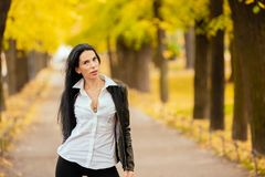 Portrait of a beautiful young girl walking in the autumn in a pa stock photography