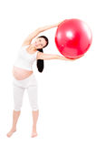 Portrait of a beautiful young pregnant woman executing exercises with fitball. Isolated on white background Royalty Free Stock Photography