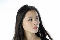 Portrait of a beautiful young woman. Studio portrait of a asian girl Royalty Free Stock Photography