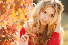 Portrait of beautiful young woman in autumn park. Royalty Free Stock Image