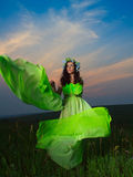 Portrait of a beautiful young woman on background of sunset Royalty Free Stock Images