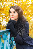 Portrait of a beautiful young woman in black coat. Portrait of a beautiful young woman in a black coat on a background of yellow autumn tree Stock Image