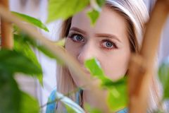 Portrait of beautiful young woman with blond hair and long eyelashes, close up through leaves. Portrait of beautiful woman with long eyelashes in the city royalty free stock images