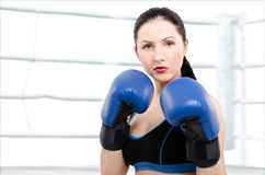 Portrait of a beautiful young woman in boxing gloves Royalty Free Stock Image