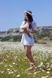 Portrait of a beautiful young woman in chamomile field. Happy girl collecting daisies. A girl resting in a field of chamomile. S Royalty Free Stock Photos