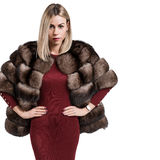 Portrait of a beautiful young woman dressed in a fur coat Stock Photos