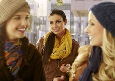 Portrait of beautiful young woman between friends Stock Image