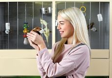 Portrait of beautiful young woman holding guinea pig. In pet shop Royalty Free Stock Photos