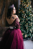 Portrait of a beautiful young woman in an image of the Queen. Colored dress Marsala Royalty Free Stock Photo