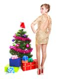Portrait of a beautiful young woman near the Christmas tree and. Presents isolated over white background Royalty Free Stock Photo