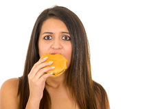 Portrait beautiful young woman posing for camera eating hamburger while making guilty facial expression, white studio Stock Photography