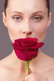 Portrait of a beautiful young woman with a rose. Portrait of a beautiful young woman with a rose on gray background Royalty Free Stock Images