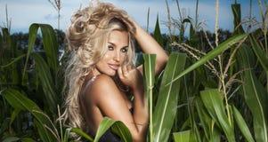 Portrait of beauty blonde lady Stock Image
