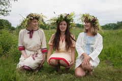 Portrait of beauty girls in camomile chaplet. Three girls in flowers wreath and traditional clothes royalty free stock image