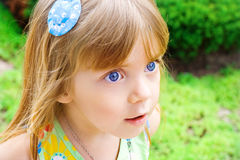 Portrait of a beauty little girl Stock Images