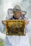 Portrait of beekeeper with honeycomb Stock Images