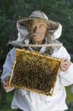 Portrait of beekeeper with honeycomb Stock Photos