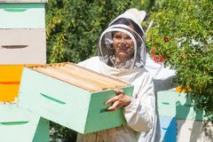Portrait Of Beekeeper Working At Apiary. Portrait of beautiful beekeeper carrying honeycomb box while working at apiary Royalty Free Stock Photography