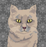 Portrait of a beige cat on a retro background. Vector illustration with beige cat on a floral retro background Stock Images