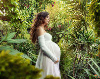 Portrait of a beuatiful pregnant woman Stock Photography