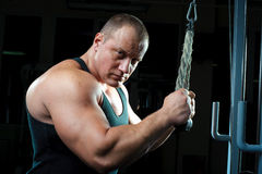 Portrait of big muscular man Stock Images