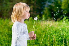 Blond little boy blowing a dandelion. A portrait of blond little boy who blowing a dandelion Royalty Free Stock Photo