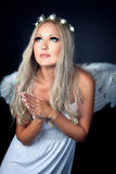 Portrait of a blonde in Angel costume Royalty Free Stock Photography