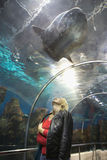 Portrait of blonde women in ocean world Stock Images
