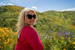Portrait of a blonde young adult woman in a field of poppies and mixed wildflowers during the California super bloom stock photo