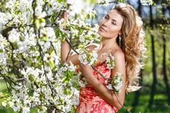Portrait in blossoming of apple-trees. Female street portrait in blossoming of apple-trees Stock Images