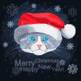 Portrait of blue-eyed cat in the hat of Santa Clau Stock Photography