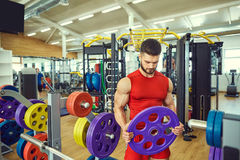 Portrait of a bodybuilder with  beard in the gym.  Stock Image
