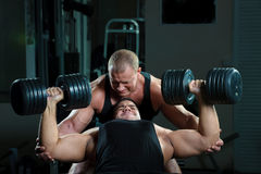 Portrait of bodybuilders Royalty Free Stock Images