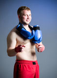Portrait of boxer Royalty Free Stock Images