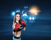 Portrait of a boxer girl, blue, icons Stock Photography