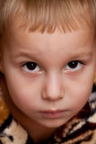Portrait of  boy. Portrait of cute  boy looking to the camera Royalty Free Stock Images