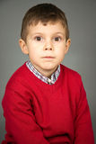 Portrait of the boy Stock Images