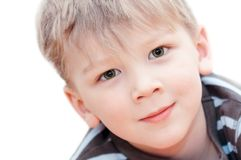 Portrait of a boy. On white background stock images