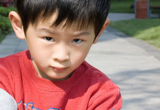 Portrait of boy. The young boy is looking at the lens Royalty Free Stock Images
