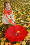 Portrait of boy in autumn park. Royalty Free Stock Image