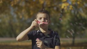 Portrait of the boy blowing a soap bubble in the park. Child is playing outdoors. Portrait of the boy blowing a soup bubble in the park. Child is playing stock footage