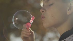 Boy blowing a soap bubble in the park close up. Child is playing outdoors. Portrait of the boy blowing a soup bubble in the park. Child is playing outdoors stock footage