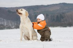 Portrait of boy with dog Royalty Free Stock Images