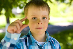 Portrait of boy of five years outdoor Stock Image