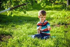 portrait of the boy in a garden, considers plants through a magnifying glass. stock images
