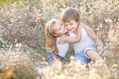Portrait of a boy and girl on the field Stock Image