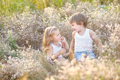 Portrait of a boy and girl on the field Royalty Free Stock Image